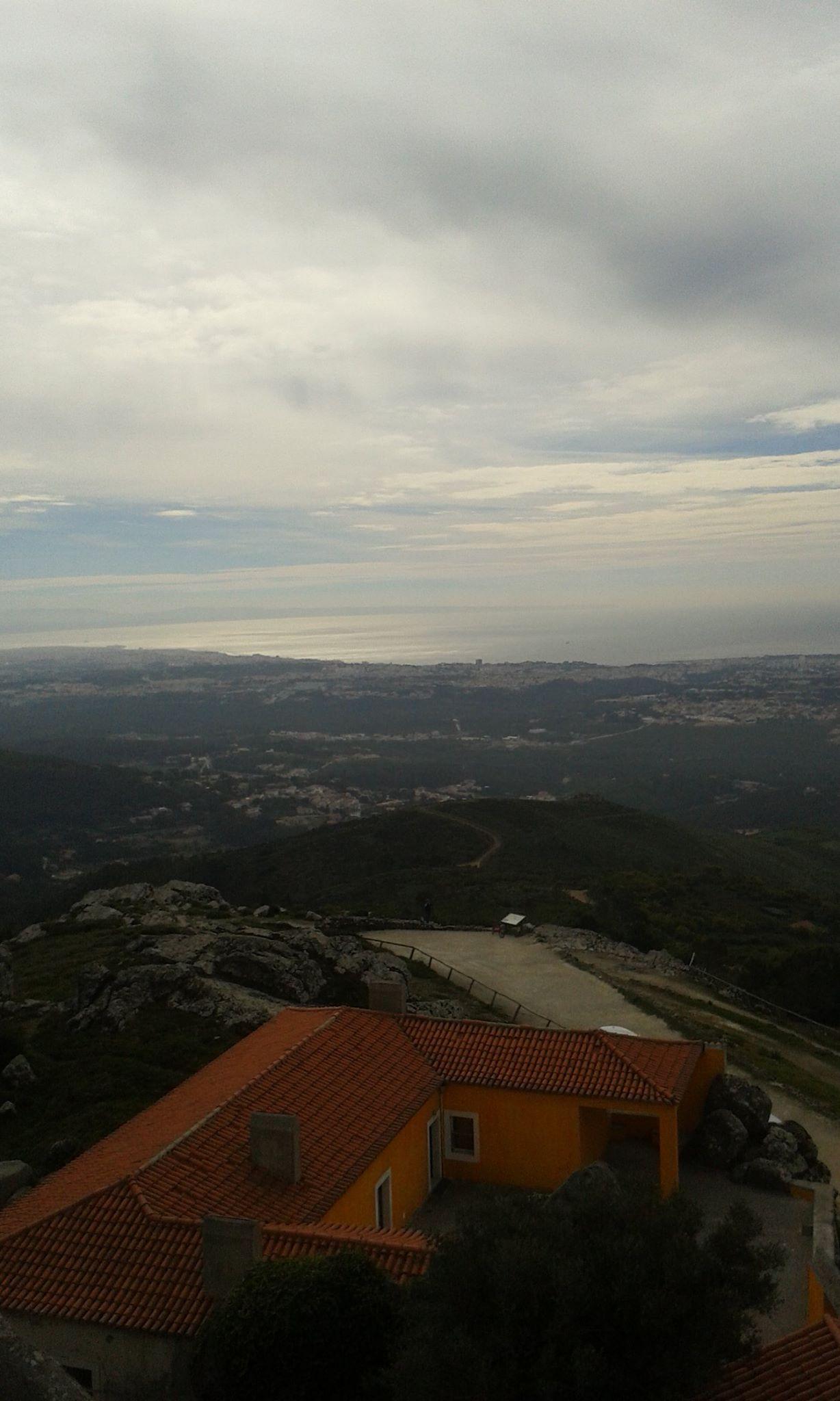peninha_3.jpg