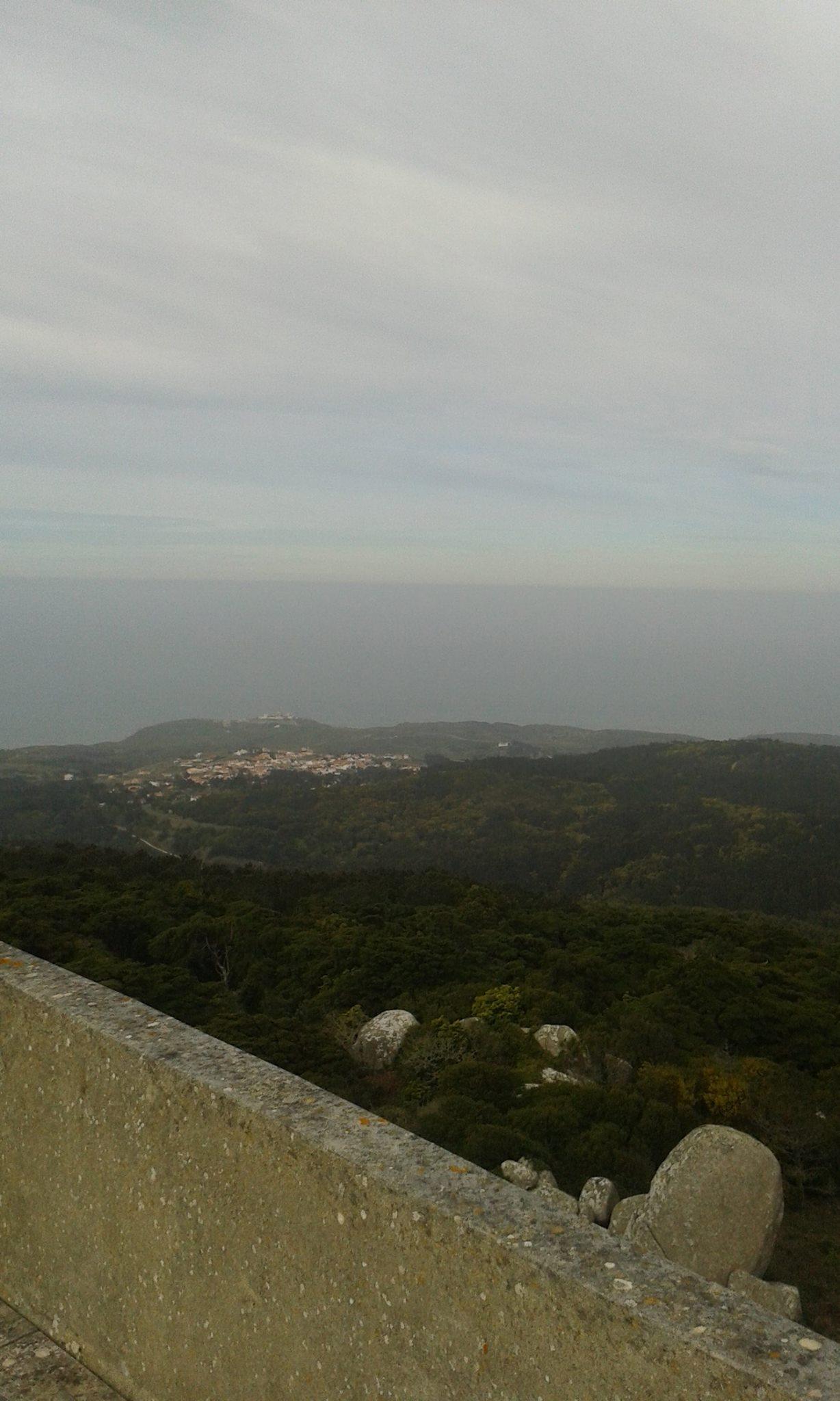 peninha_5.jpg